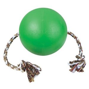 "7"" Tuggo Water Weighted Dog Toy - Green"