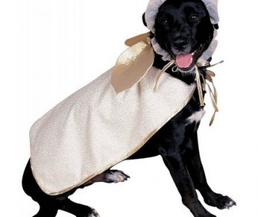 Angel Dog Pet Pet Costume - Medium