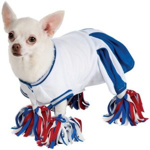 Blue Cheerleader Dog Costume Large
