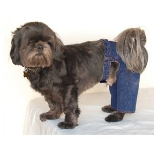 Blue Denim Jeans Pants For Puppy Dog - 2 Extra Small (Gift for Pet)