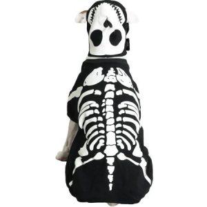 Casual Canine Glow Bones Costume, Size: XLARGE