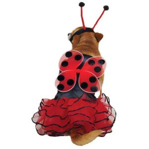 Casual Canine Lucky Bug Costume Red MEDIUM