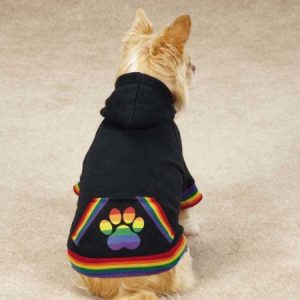 Casual Canine ZM3495 24 17 Puppy Pride Hoodie for Dogs - X-Large - Black