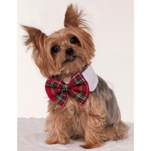Christmas Plaid Dog Bowtie