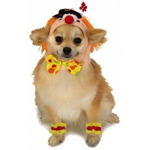 Clown Pet Pet Costume - Small