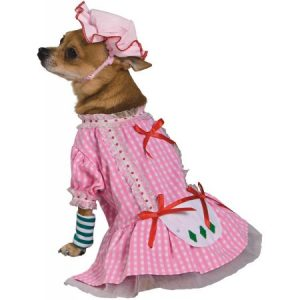 Country Pup Pet Pet Costume - Small