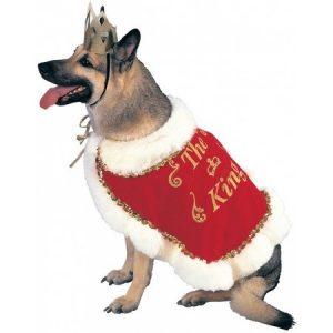 King Pet Pet Costume - Small