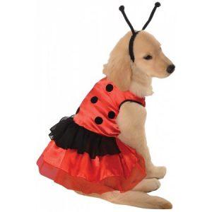 Ladybug Dress Pet Pet Pet Costume - Large