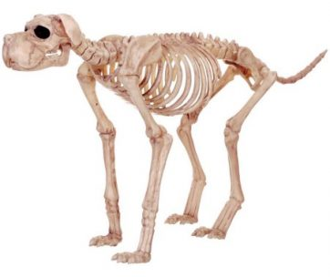Large Skeleton Dog Halloween Decor