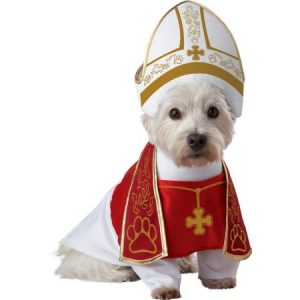 MFR BACKORDER SEASONAL 100915 Animal Planet Holy Hound Dog Costume XSmall