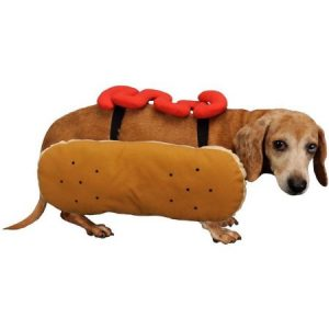 Otis and Claude Fetching Fashion Hot Diggity Dog Costume Ketchup, M