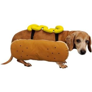 Otis and Claude Fetching Fashion Hot Diggity Dog Costume Mustard, L