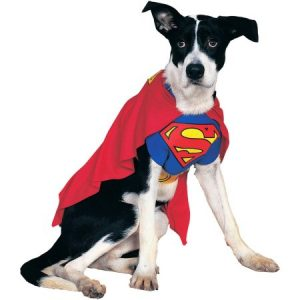 Superman Dog Costume - Medium