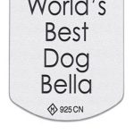 Sterling 925 Silver Dog Tag Back