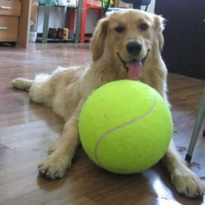 24cm Dog Toys for Large Dogs Play Dog Ball Launcher Inflatable Tennis Ball Thrower Chucker Ball