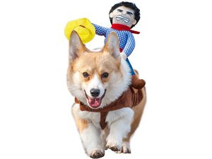 Dog Costumes For Dogs