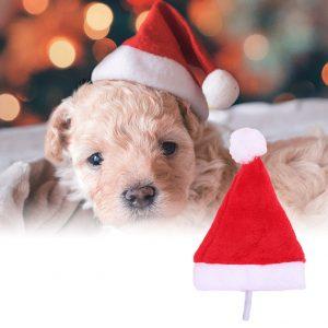 Christmas Holiday Costume Plush Pet Dog Santa Hat Party Supplies Decor Xmas Gift