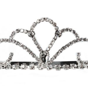 Classic Cascading Swirl Crown Tiara Christmas Costume DressUp Bridal Prom Silver